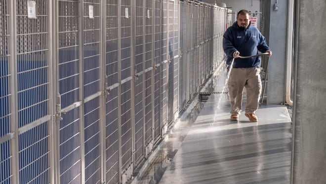 Animal Care Specialist Porfirio Galvan rinses newly sealed flooring in front of 25 of the 100 new kennels at the Tulare County Animal Shelter on Monday, January 29, 2018. The shelter has shown improvement over the last two years, including the number of pets placed and reducing response time to Type 1 calls.