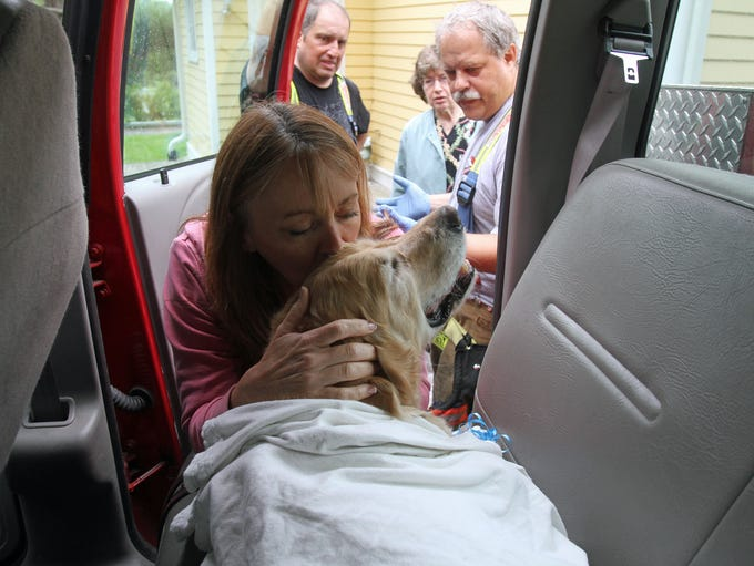 Workers at Middlebranch Veterinary greet Figo as he