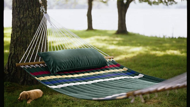 Northern Michigan University is warning students they could face a $25 fine for hanging a hammock on trees in the city of Marquette.