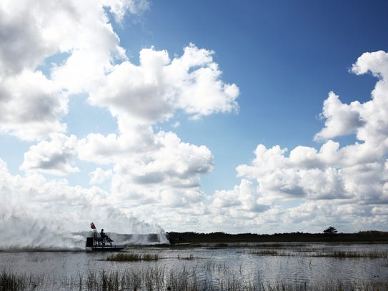 Airboaters race their boats in the Everglades National