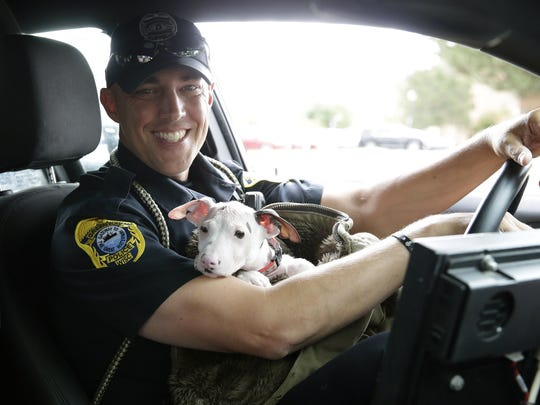"Green Bay Police Officer Joel Zwicky holds Mr. Magoo the dog in his squad car on June 26, 2017. Zwicky started the ""K9 for a Day"" program to take shelter dogs on patrol with him a few times a week to help get them adopted."