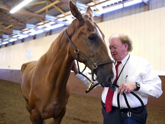 -NAS-WALKING HORSE RESCUE-01.jpg_20150829.jpg