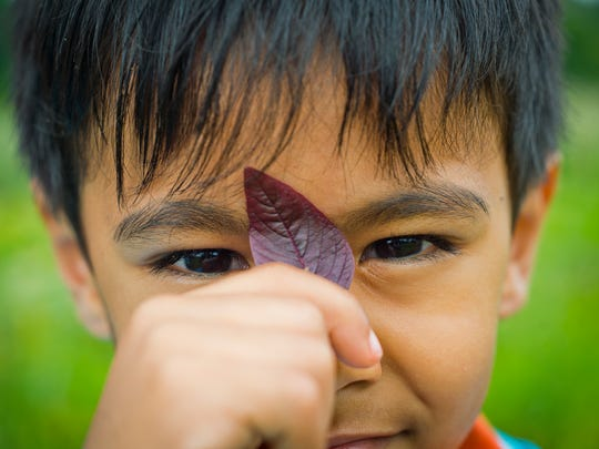 """Ganesh and Indra Adhikari's son Aadhitya, 5, holds up a leaf of a red variety of a plant called """"palange"""" back in their native Bhutan that they use to make curry. The family grows both the red and a green variety of the plant at their community garden plot at the Intervale."""