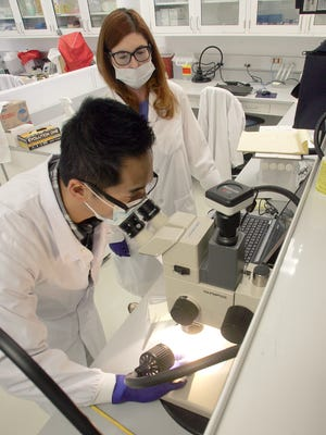 Alex Wai and Jill Nquyen, lab technicians at the Ventura County Sheriff's Office Forensic Service Bureau, test DNA results in Ventura.