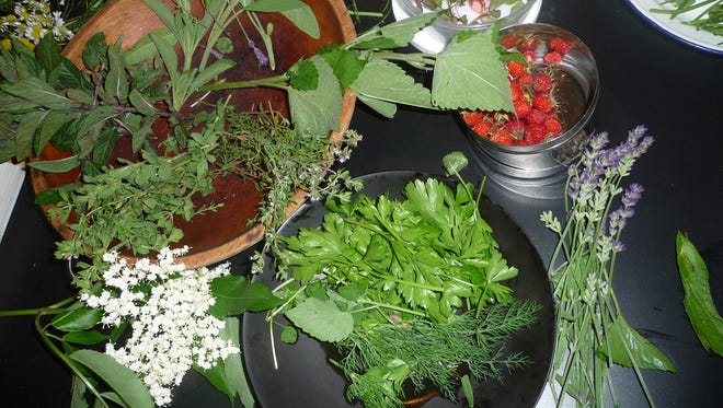 Olana State Historic Site will host a summer herb gardening workshop on August 2.