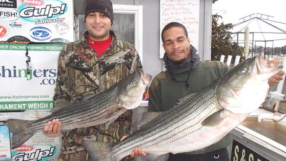 Louis Pabon of Galloway Township (left) and Nikita Grantham of Atlantic City each hold a striped bass they caught in Oyster Creek on March 1, opening day of striped bass season.