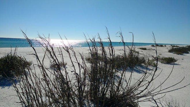 Navarre Beach is one of three local spots in the running for best beach in Florida as part of USA Today Readers' Choice 2018 Contest.