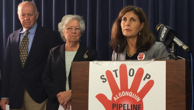 Susan Van Dolsen of Stop Algonquin Pipleline Expansion, or SAPE, speaks Tuesday at a news conference in Albany with fellow critics of the pipeline expansion in Westchester County.