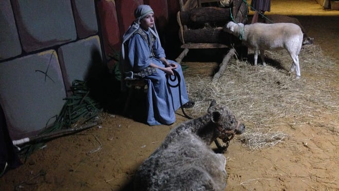 A scene from the first night of Emmanuel Baptist Church's Pilgrimage to Bethlehem on Thursday