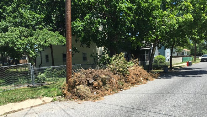 The city next year will drastically cut back on curbside brush collection. This debris was on Fulton Street on Thursday.