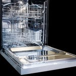 A dishwasher that's seen, not heard.