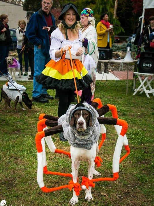 BMN 110515 Pet Parade LEAD