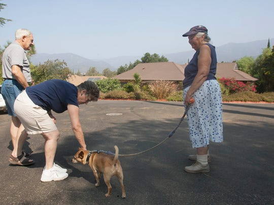 Jon Lambert (from left) and his wife, Linda, stop in front of their home on Taormina Lane in Ojai to visit with their neighbor, Marion Leeman, and her dog, Pace.