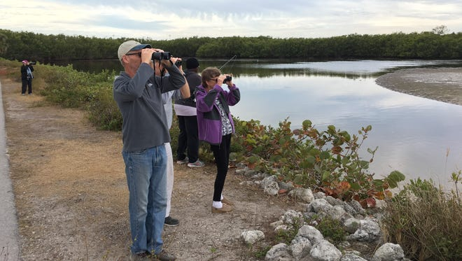 """Visitors to the J. N. """"Ding"""" Darling National Wildlife Refuge on Sanibel bird watch and fish Saturday, Jan. 20, 2018, despite the government shutdown that took effect at midnight."""