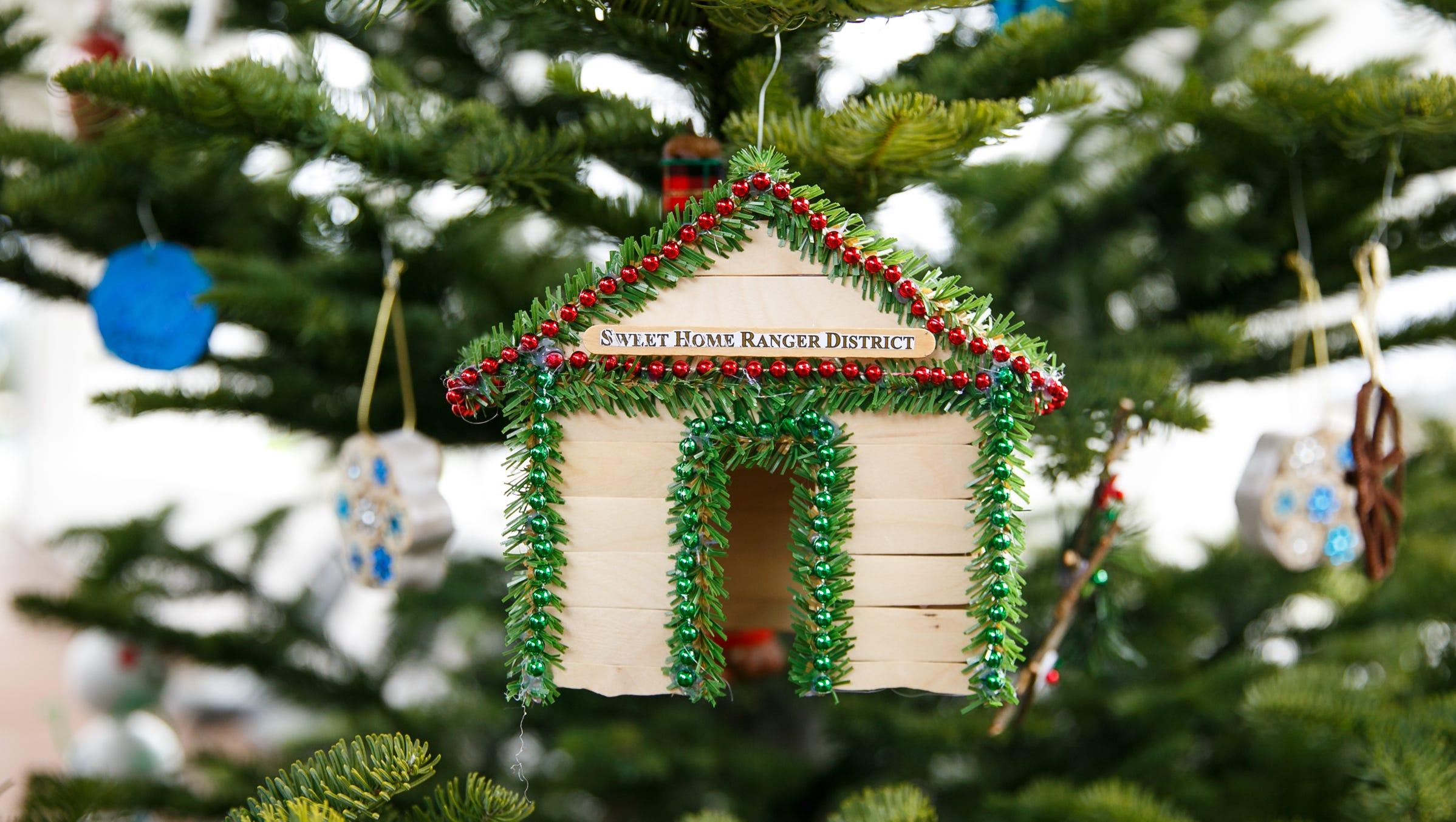 Jan. 19, 2021 And Christmas Tree And Sweet Home Oregon 2018 U S Capitol Christmas Tree Will Be Cut Near Sweet Home Oregon