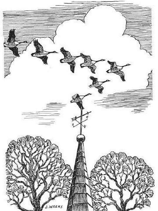 J. Weeks Flying Geese
