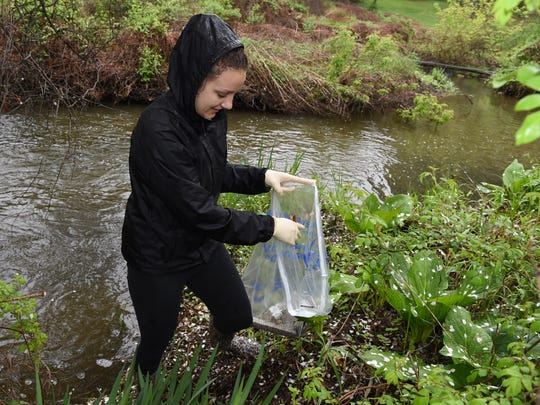 Town of Poughkeepsie resident Christina Joerg removes litter from the  Casperkill Creek on the campus of Vassar College on Saturday during the 5th annual Riverkeeper Sweep.
