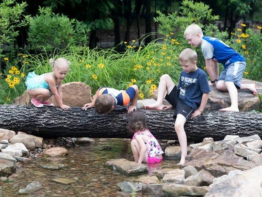Kids are enthralled with a Box turtle they discovered in the creek at Wesselman's Nature PlayScape on Tuesday, June 12.
