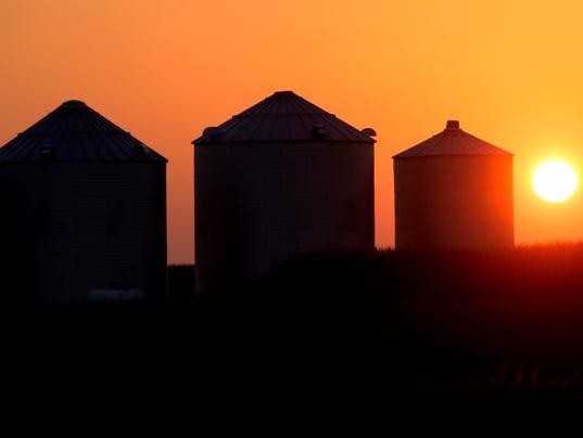 Corn-bins.jpg