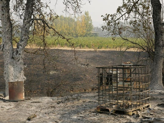 AP CALIFORNIA WILDFIRES WINE COUNTRY A USA CA