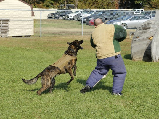 K9 Teams certified