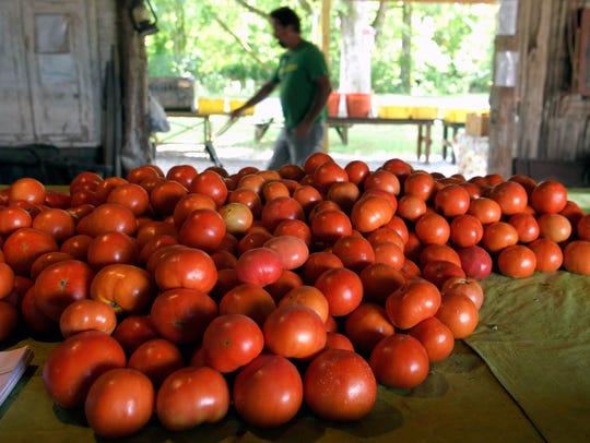 Bobby Burns helps run his family's farm produce stand