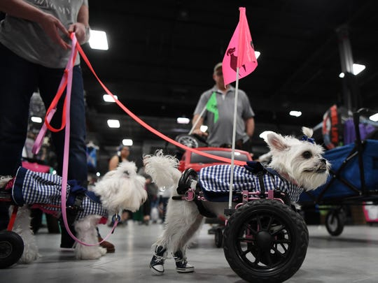 Super Pet Expo at the NJ Convention & Exposition Center