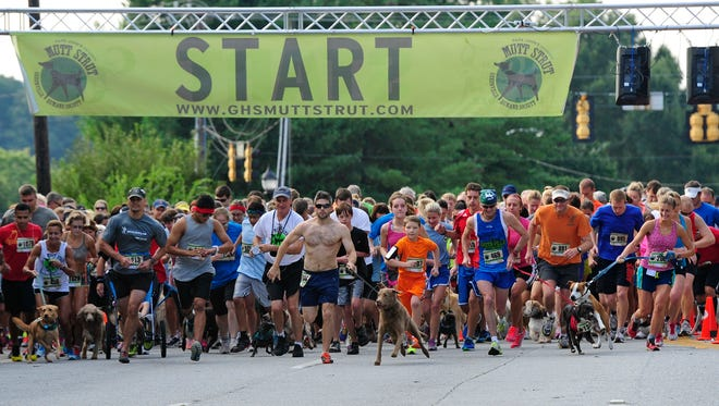 The 2nd Annual 5K Mutt Strutt Run/Walk benefiting the Greenville Humane Society was held Saturday, Aug. 24. The race started at First Baptist Church and ended in Mutt Strutt Village at Cleveland Park.