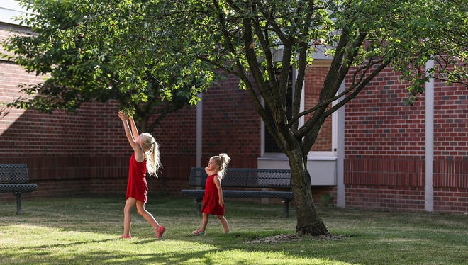 From left, Georgie Ranly, 5, and Beatrice Ranly, 2, pick cherries from a tree at Orchard Park Elementary in Carmel, while their parents join in a meeting, Monday, June 18, 2018.