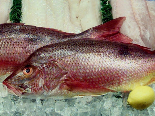Red snapper is a delicious catch for summer fishermen.