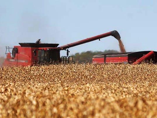 AP Corn Meeting
