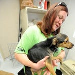 Humane society to resume taking cruelty complaints