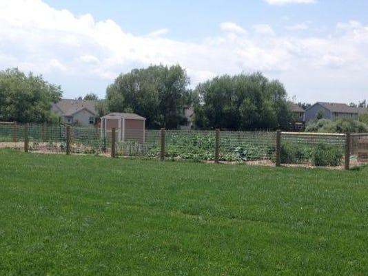 FTC0813.gg.garden.folo1.JPG