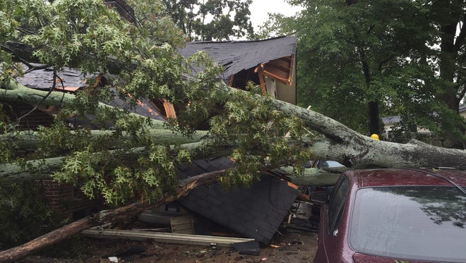 A large red oak fell off Lynn Drive in Taylors Sunday morning, damaging a family's home and cars.