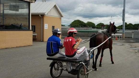 9 fascinating things I learned about harness racing