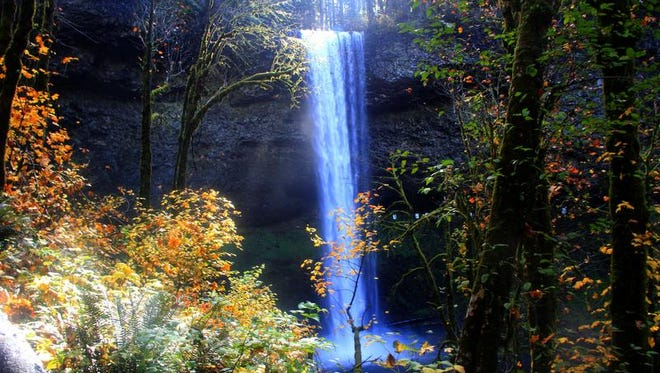 Best hikes near Salem and Keizer. No. 3 - Canyon Trail, Silver Falls State Park. South Falls is a classic 177-foot cascade at Silver Falls State Park.