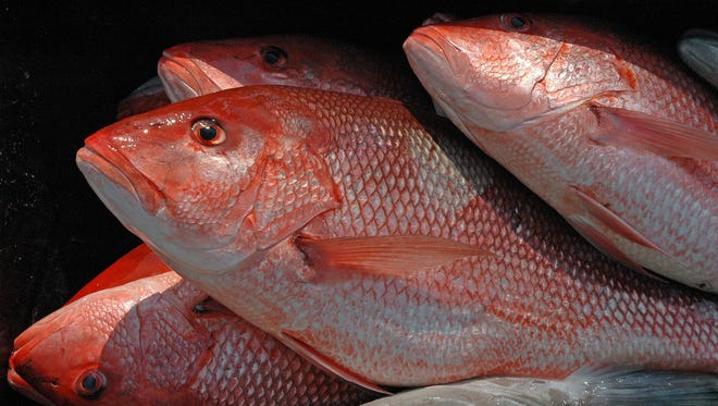 The U.S. Commerce Department says recreational anglers in the Gulf of Mexico will have 39 more days to fish federal waters for red snapper — even though this could add years to the species' recovery from nearly disastrous overfishing.