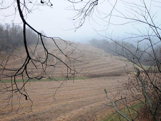 The fog didn't lift on opening day in Richland County until early afternoon.