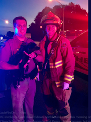 A passerby recovered a puppy that was in one of the vehicles.