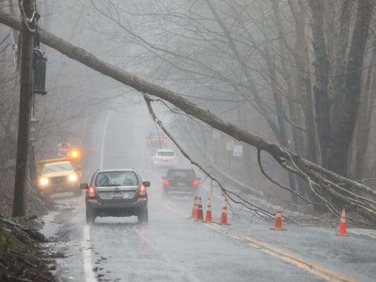 Route 120 tree down