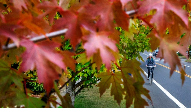 A hint of fall has started to show on leaves framing a bicyclist riding in Eugene, Ore. on Sept. 25, 2017.
