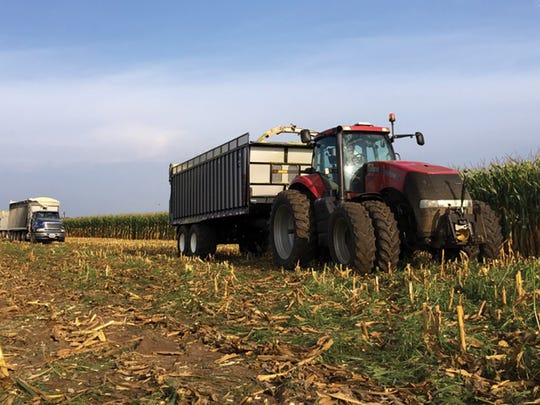 Shane crops 3,200 acres with the help of two full-time employees and several seasonal helpers, including his brother.