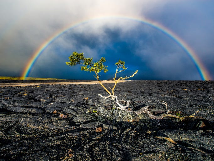 A rainbow shines bright over the lava rocks along Saddle