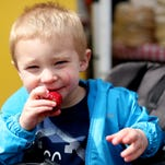 Jensen Kuester, 2, of Salem, eats strawberry on the first day of the season for the Wednesday Market in downtown Salem on Wednesday, May 6, 2015.
