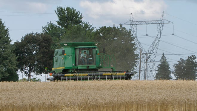 With RG&E power lines looming behind him, David Krenzer harvests acres of wheat as he works the fields at the family farm in Chili. The Krenzers are fighting plans to build a substation and new towers on their land.