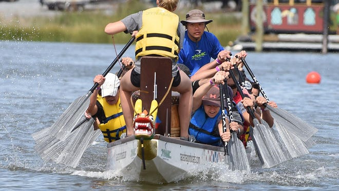 Paddlers are hard at work as they race in last year's event. The 3rd annual Lewes Dragon Boat Festival will take place Sunday, Sept. 13.