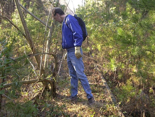 Mike Foley looks at trees growing within the railroad