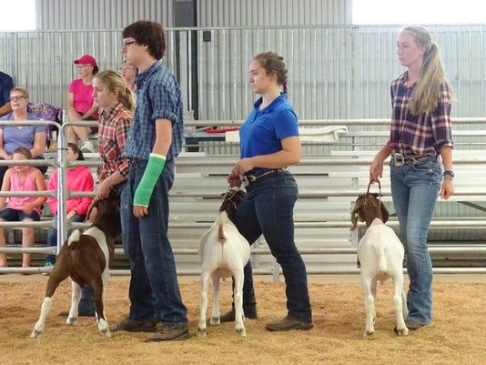 1- Goats