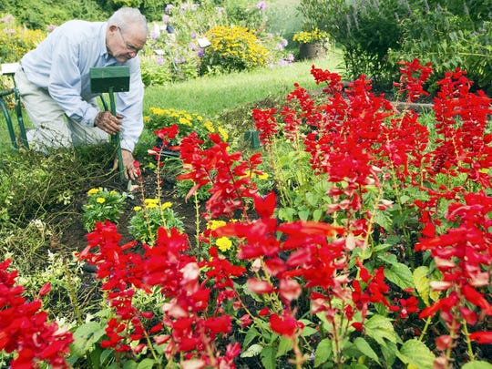 York County Master Gardener Burt Kniseley of Spring Garden Township freshens up a bed in the gardens at John Rudy County Park in East Manchester Township in this 2012 photo.