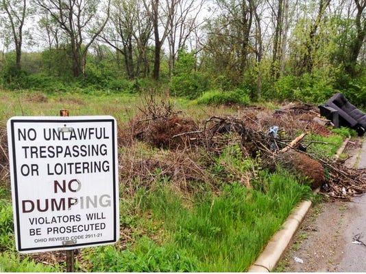 Dumping-on-Brushwood.JPG